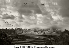 7 Carpet bombing Posters and Art Prints   Barewalls Carpet Bombing Art Print Poster   Vietnam War   Artist Recreation