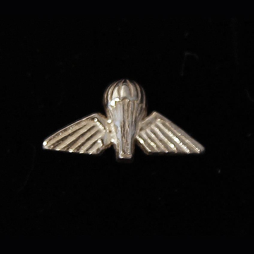 Airborne Wings Lapel Pin