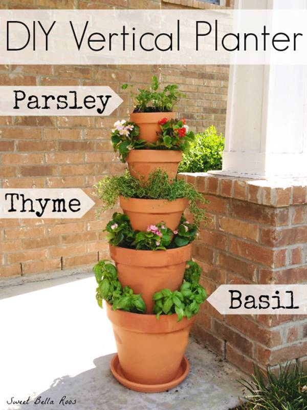 Easy Vegetable Garden Box