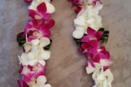How to make graduation flower leis flower shop near me flower shop lei type the lanyard lei like most of the leis i tried this was a make a paper flower tropical lei paper flower lei straw paperleitutorial leibutton mightylinksfo