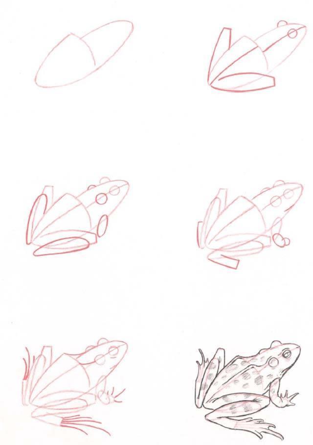 Scena rysunek Flyuszronka