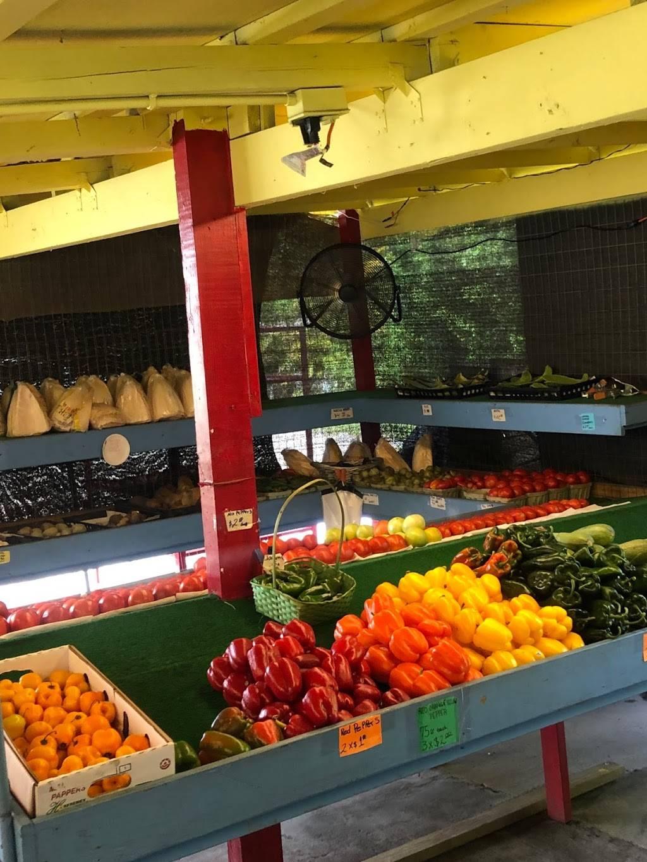 Farmers Market Stuart Fl