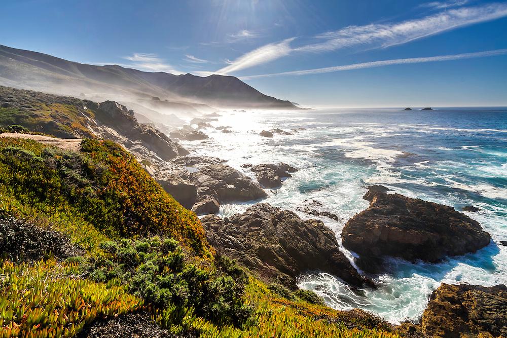 Landscape Design Northern Beaches