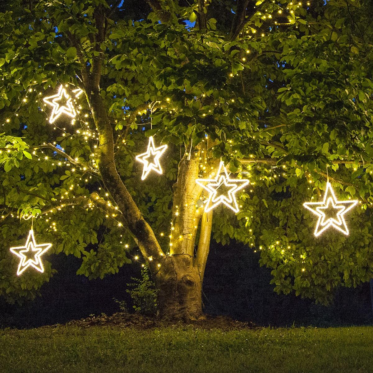 Trees Christmas Lights