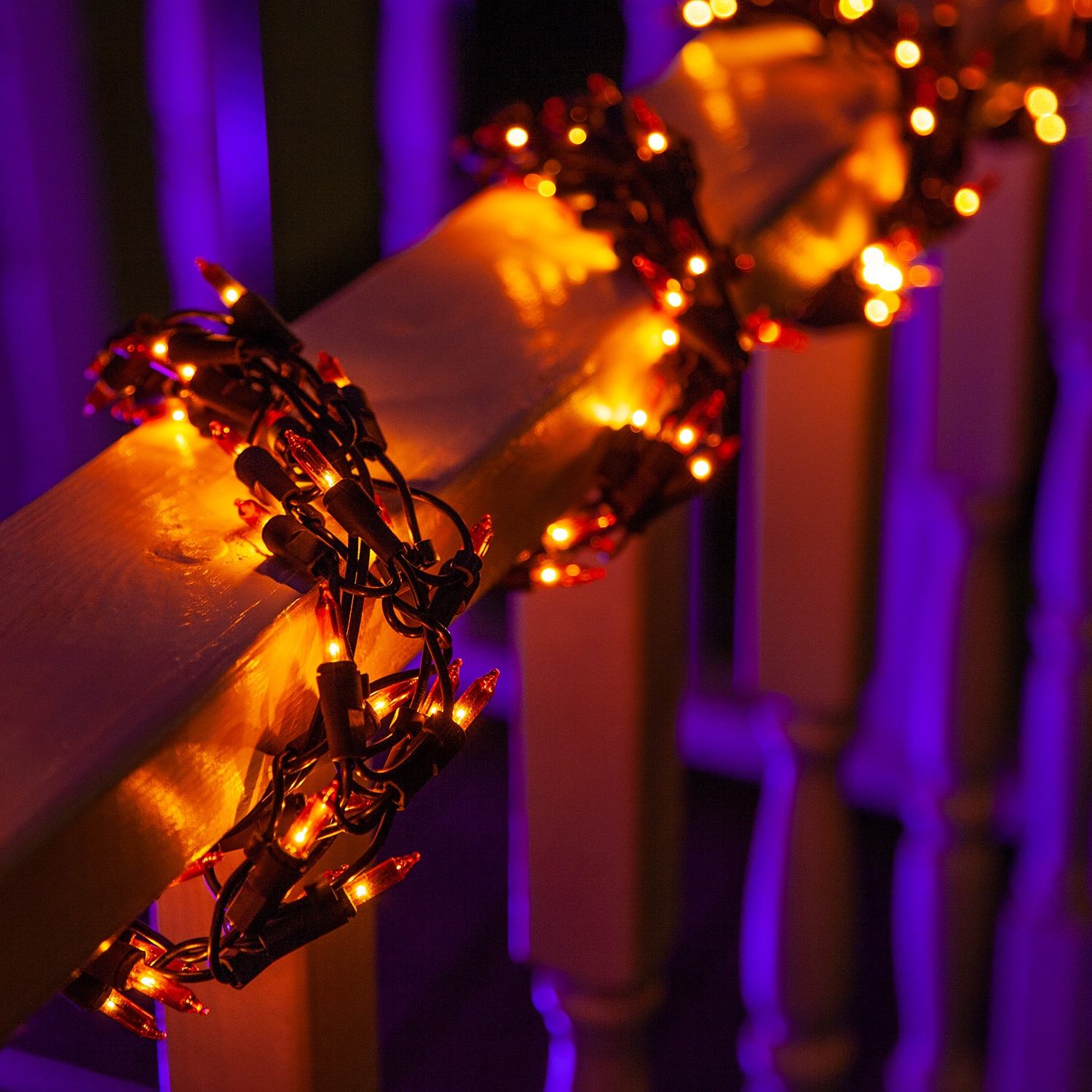 Laser Projected Christmas Lights