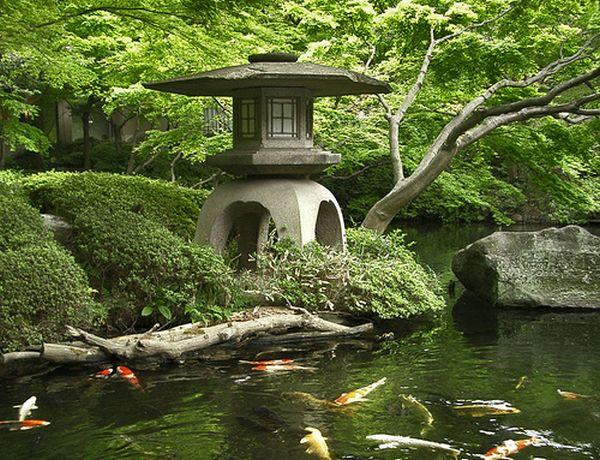 Design Your Own Zen Garden
