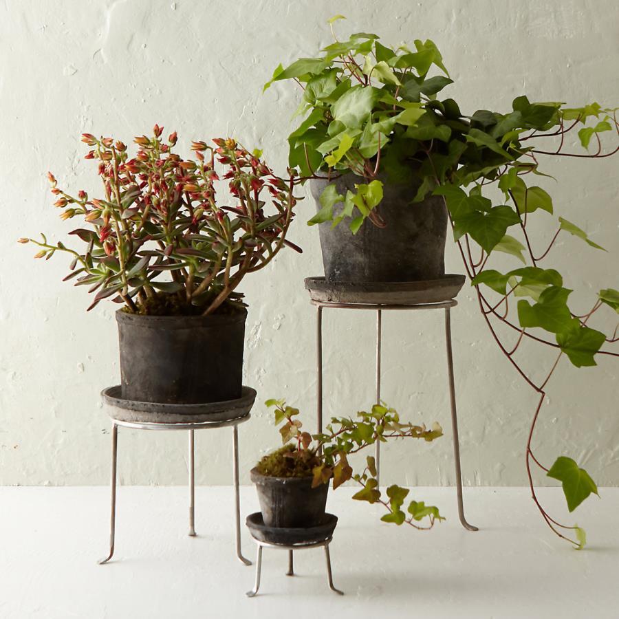 Tall Vase Planters