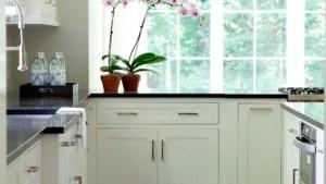 White Inset Cabinets Contemporary Kitchen Milton