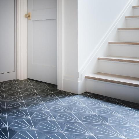 Cement Star Pattern Floor Tiles Design Ideas Cement Tile Shop Starburst Hex Black floor tiles lead to powder blue  paneled laundry room doors adorning brushed brass door knobs