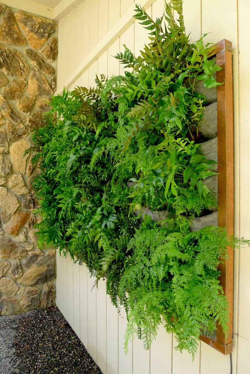 Safe Plastic Planters Vegetables
