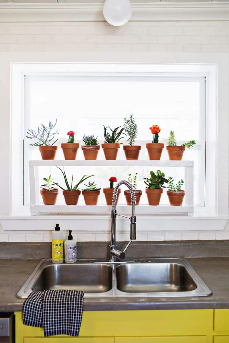 Wall Herb Planter Indoor