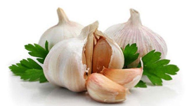 4 Tanaman Herbal Ini Ampuh Atasi Stroke