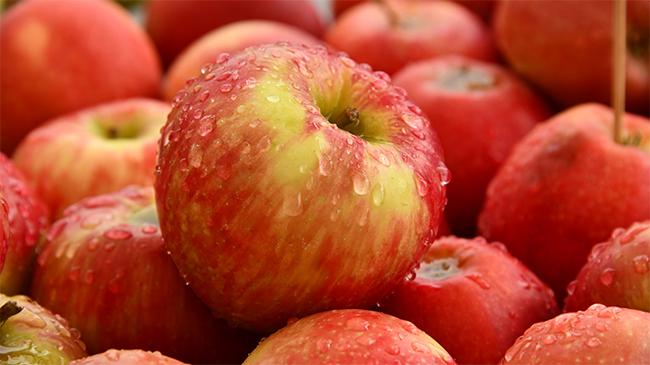 Tak Suka Buah Apel? Simak Dulu 5 Manfaat Buah Apel Untuk Kesehatan