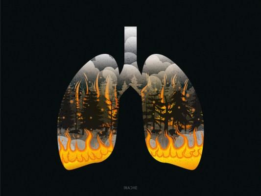 我们已知的武汉肺炎的重要消息,都不是武汉官方首发的