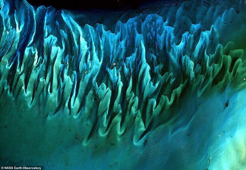 Балдырлар багамамен толып кетті. Спутниктен 2001 жылдың қаңтарында жасалған сурет