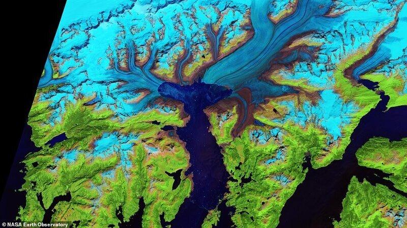 Аляскадағы Колумбия мұздығының шегінуін көрсететін спутниктік сурет, шілде, 2014 ж
