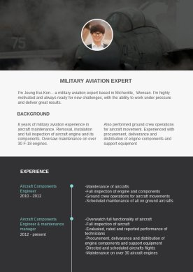 Aircraft Engineer Resume Template   Flipsnack Aircraft Engineer Resume Sample