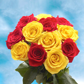 Yellow and Red Roses Next Day Delivery   GlobalRose Yellow and Red Roses Next Day Delivery