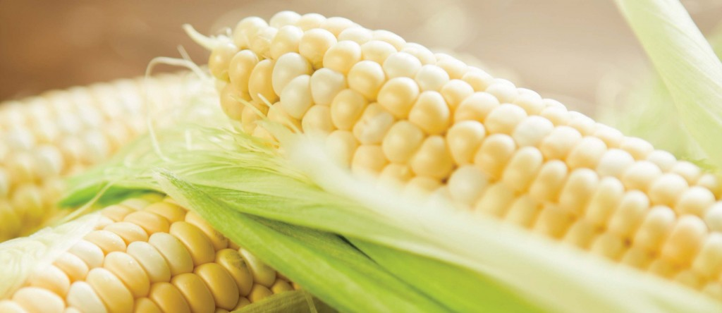 Gluten Free and Corn Free: How to Manage Two Tricky ...