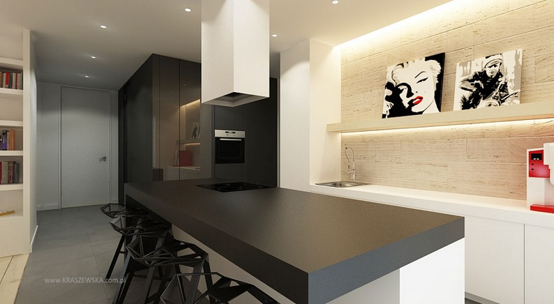 Small Contemporary Kitchens Design Ideas