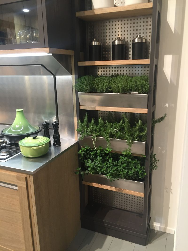 Kitchen Wall Herb Garden