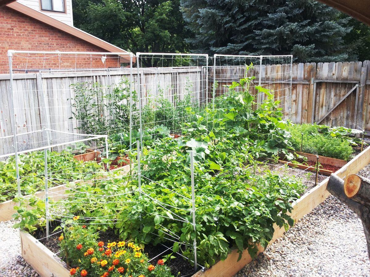 Garden Layout Ideas Small Garden