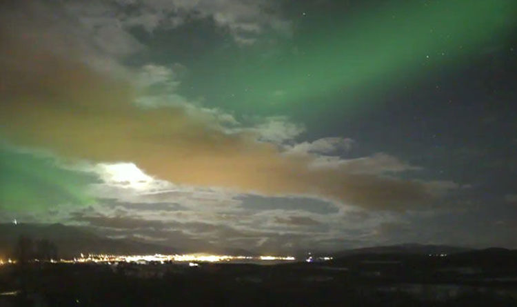 Northern Lights Norway Forecast