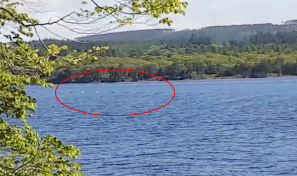 Loch Ness Monster Proof