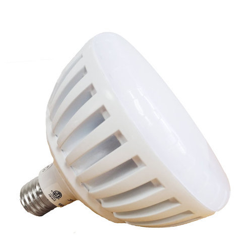 Replacement Pool Light Bulb