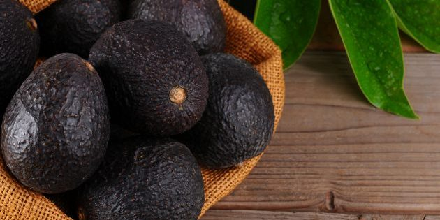 Как выбрать спелое авокадо: авокадо »хасс«