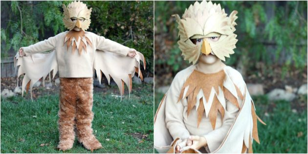 Mga costume sa DIY Christmas: Griffin