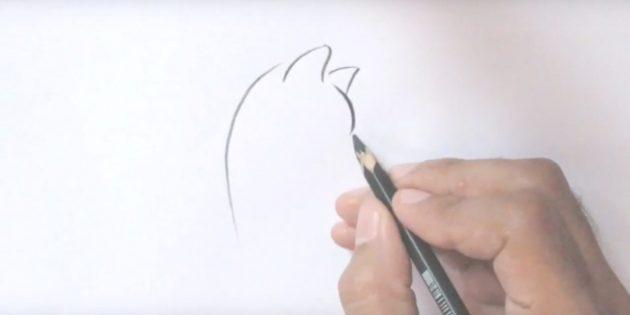 오른쪽 상단에서 귀와 대담한 이마 선을 그립니다.