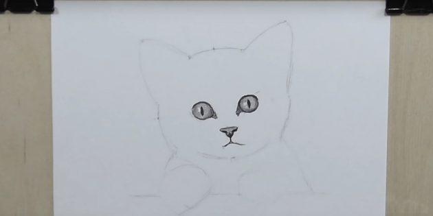 Corajosamente círculo contornos de olhos, marque o brilho e desenhe os alunos