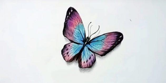 Kuinka tehdä realistinen perhonen värillisellä lyijykynällä