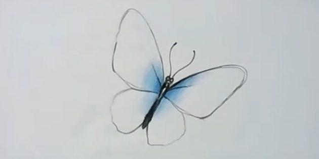 ทำให้ผู้อาวุโสของเส้นและติดปีกสีฟ้าบางส่วน