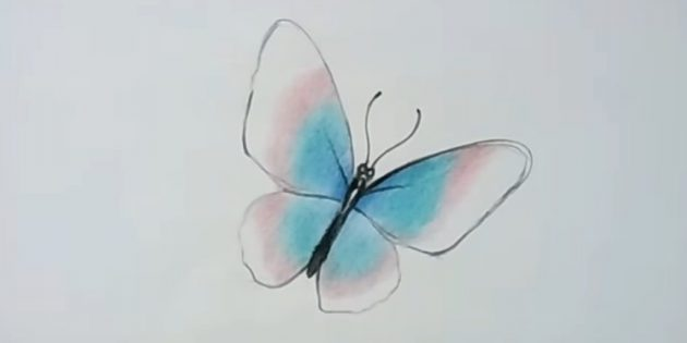 Keep coloring wings with red pencil