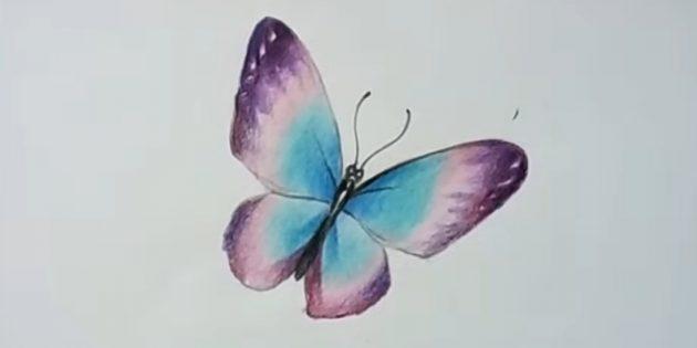 Lisää kyllästetty violetti väri perhonen siivet