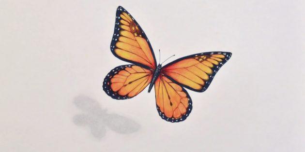 Kuinka tehdä realistinen perhonen merkkejä ja värillisiä lyijykynät