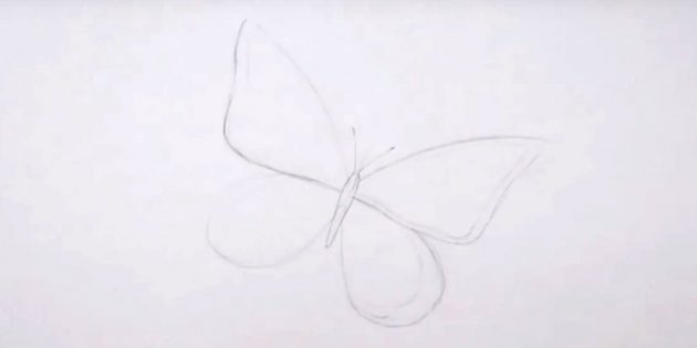 Draw a body, mustache and outline the borders of the wings