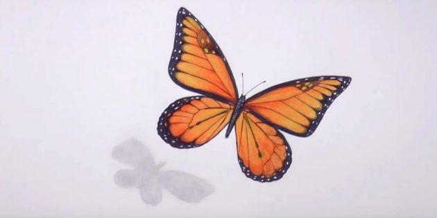 Сотрите карандашные наброски и чёрным цветом подправьте узор бабочки