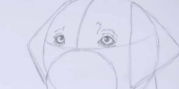 Desenhe brilho, pupilas e faça sobrancelhas