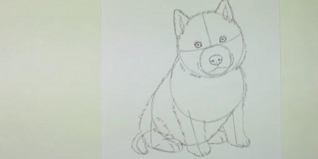 Desenhe um lutador de um cachorro