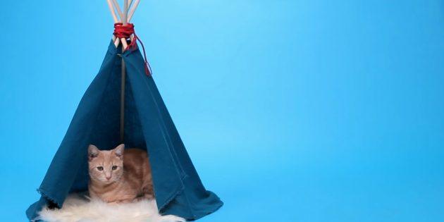 Sådan laver du en hus-shala til en kat fra racks og stof med dine egne hænder