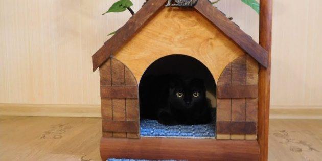 Como fazer uma casa para um gato de uma árvore faz você mesmo