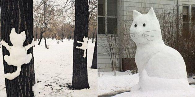 雪数字:猫