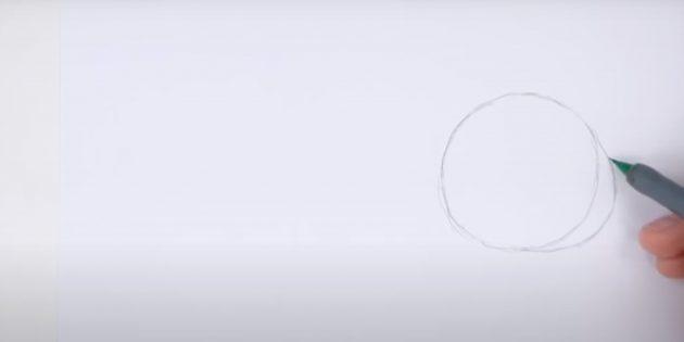 Cách vẽ thỏ: miêu tả một đường cong