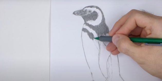 एक पेंगुइन कैसे आकर्षित करें: मार्क स्ट्रिप्स