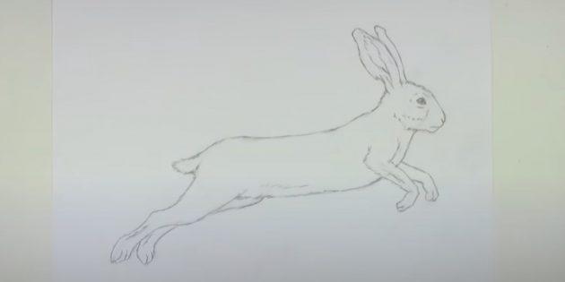 Cách vẽ thỏ rừng: Xóa các dòng phụ trợ