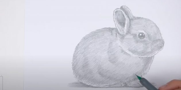Cách vẽ một con thỏ: Torch Torso và Paws