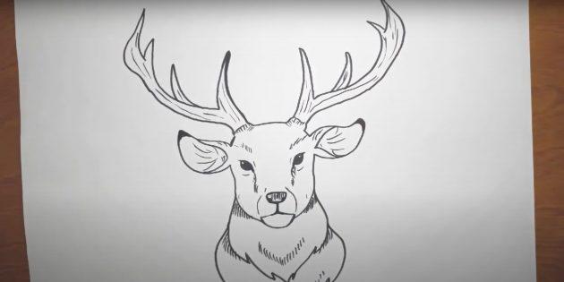 Miten tehdä peura kasvot realistisessa tyylissä